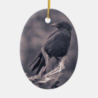 The watching Crow Christmas Ornament