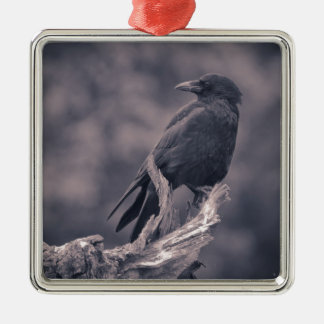 The watching Crow Silver-Colored Square Decoration