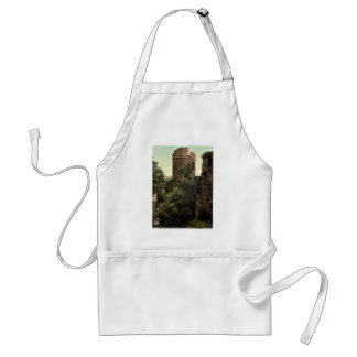 The water tower, Chester, England classic Photochr Adult Apron