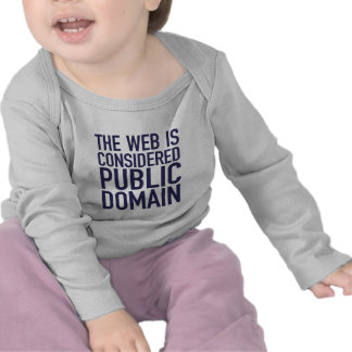 The Web Is Considered Public Domain - Blue Tee Shirts