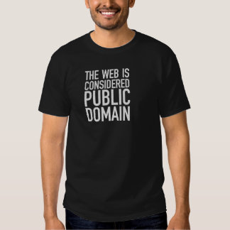 The Web Is Considered Public Domain T-shirt