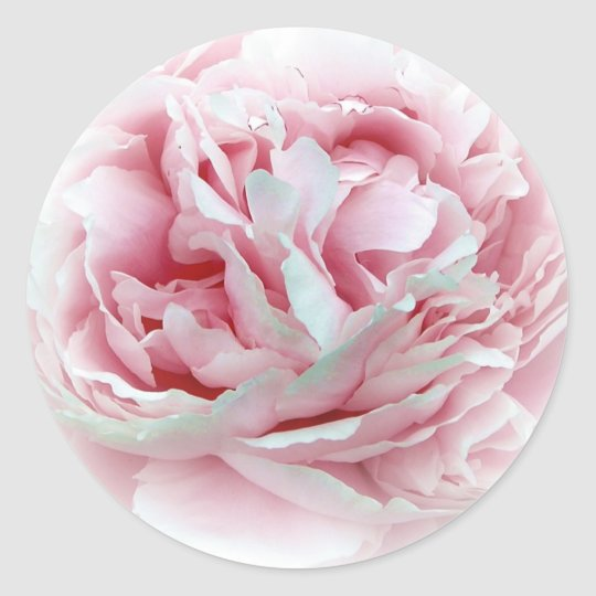The Wedding Flower Envelope Seals