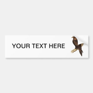 The Wedge Tailed Eagle. A Magnificent Bird of Prey Bumper Sticker