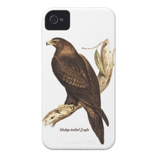 The Wedge Tailed Eagle. A Magnificent Bird of Prey iPhone 4 Covers