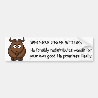 The welfare state is concerned with your wellbeing bumper sticker