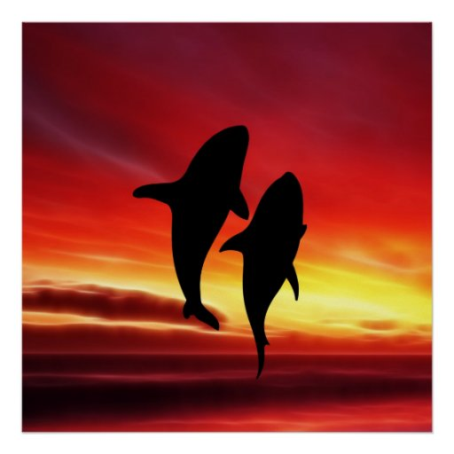 The whales dance at sunset poster