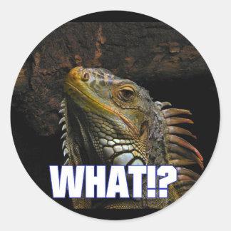 The What!? Iguana Classic Round Sticker