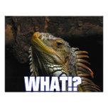 The What!? Iguana Custom Invitations