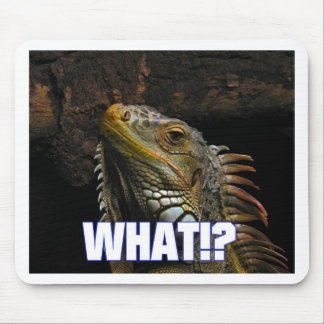 The What!? Iguana Mouse Mat