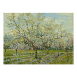 The white orchard by Vincent Van Gogh Poster