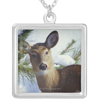 The White-tailed deer (Odocoileus virginianus), Silver Plated Necklace