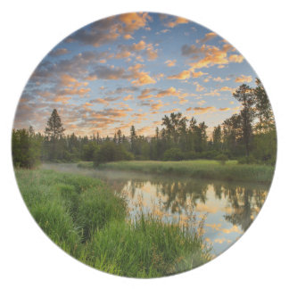 The Whitefish River with nice sunrise clouds Plate