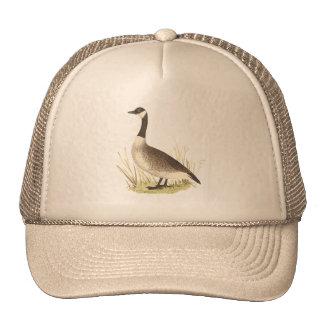 The Wild Goose(Anser canadensis) Cap