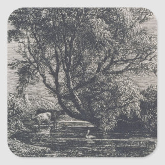 The Willow (etching) Square Sticker