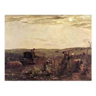 The Wine Harvest in Burgundy, 1863 Postcard
