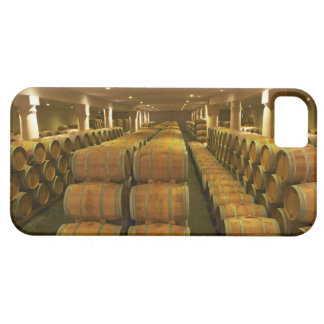 The winery, barrel aging cellar - Chateau Baron Barely There iPhone 5 Case