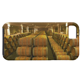 The winery, barrel aging cellar - Chateau Baron iPhone 5 Cases