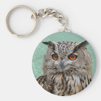 The Wise Owl Keychains