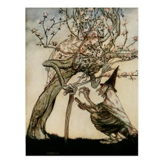 The Witch and Old Lady Tree 1922 Postcard