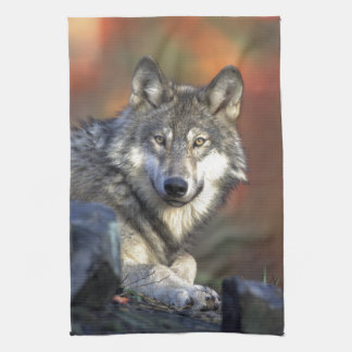 The Wolf Tea Towel