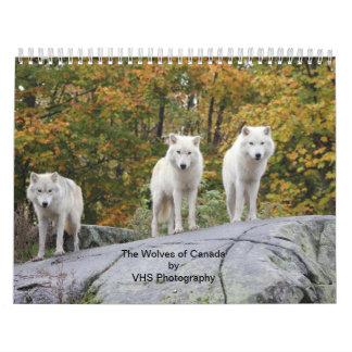 The Wolves of Canada (Calendar) Wall Calendar