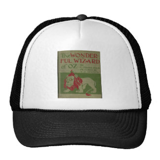 The Wonderful Wizard Of Oz Hat