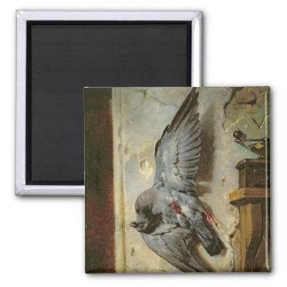 The Woodpigeon, c.1857 Magnet