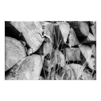 The Woodpile Poster