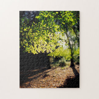 The Woods in Spring Jigsaw Puzzle
