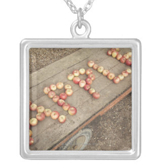 The word 'apple' in apples silver plated necklace