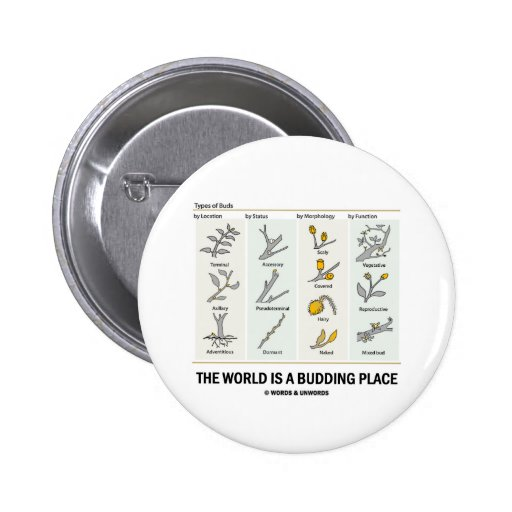 The World Is A Budding Place (Types Of Buds) Pinback Buttons