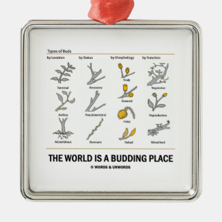 The World Is A Budding Place (Types Of Buds) Christmas Ornament