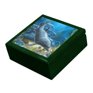 The world of the Dolphin Gift Box