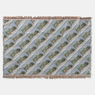 The World's first railway Throw Blanket