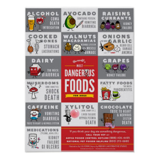 The World's Most Dangerous Foods For Dogs Poster