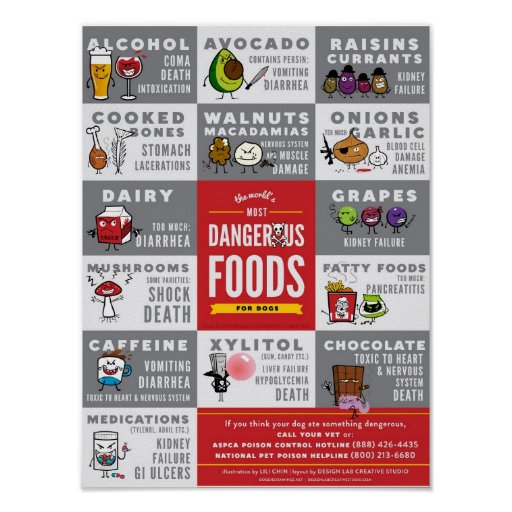 The World's Most Dangerous Foods For Dogs Print