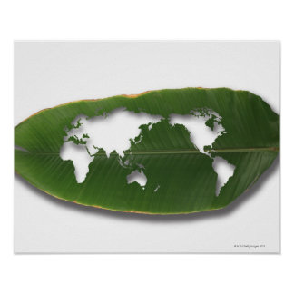 The worm-eaten leaf world map poster