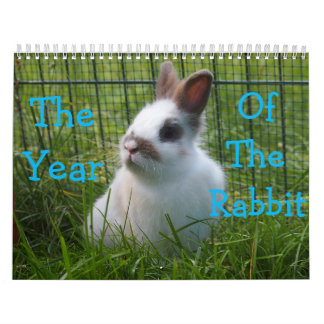 The Year Of The Rabbit Calendar