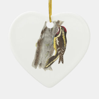 The Yellow-bellied Woodpecker(Picus varius) Ornament