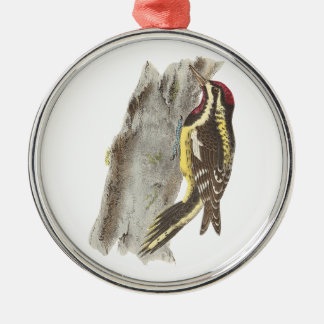 The Yellow-bellied Woodpecker(Picus varius) Silver-Colored Round Decoration