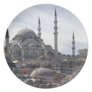 The Yeni Mosque Plate