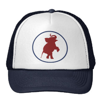The Young Republican Cap