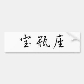 The Zodiac - Aquarius Bumper Sticker