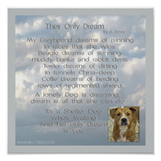 Their Only Dream - clouds Square Poster