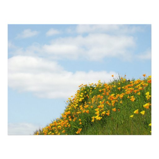 Theme Paper Flyers Blue Sky White Clouds Poppies