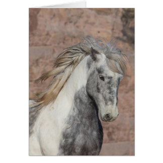 Theodore - Galloping to Freedom Greeting Card