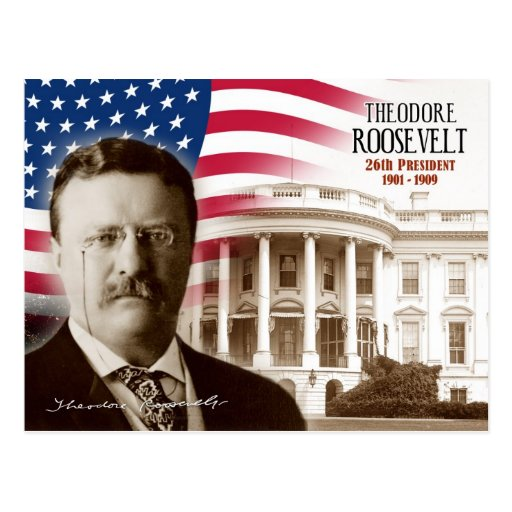 an introduction to the presidency of theodore roosevelt Introduction john milton hay was appointed secretary of state in president  william  he continued in office under president theodore roosevelt following.