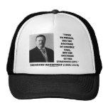 Theodore Roosevelt Doctrine Strenuous Life