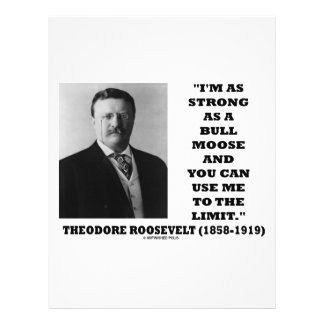 Theodore Roosevelt I m As Strong As A Bull Moose Flyer
