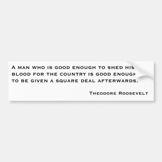 Theodore Roosevelt Quotes 2 Bumper Sticker